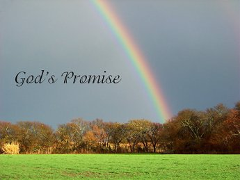 gods-promise