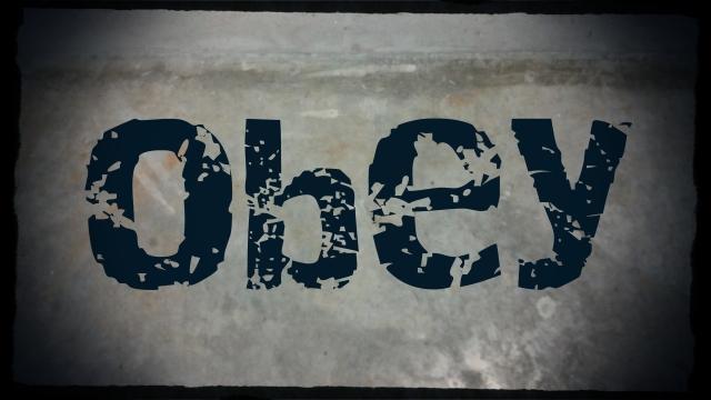 obey-grey