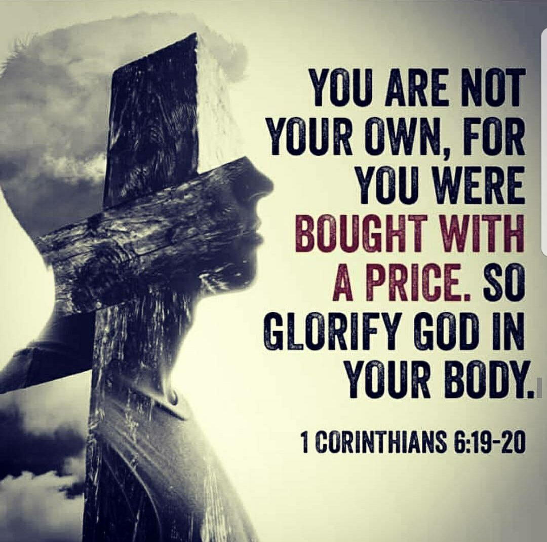 You are not your own; you were bought at a price. Therefore honor God with  your bodies. | Daily Bible Readings